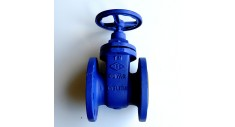 Cast iron gate valve flanged PN16